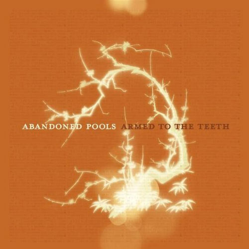 """Jesusfreakhideout.com: Abandoned Pools, """"Armed To The"""