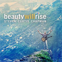 Steven Curtis Chapman, Beauty Will Rise