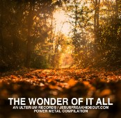 Various Artists, The Wonder Of It All